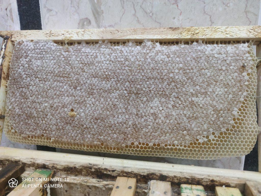 عسل صددرصدطبیعی