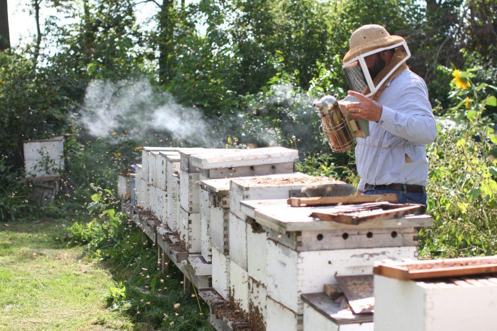 آگهی ابزارآلات زنبورداری