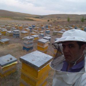 عسل با موم و بدون موم طبیعی و تغذیه