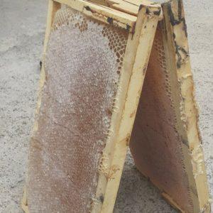 فروش عسل قوطی وسبد