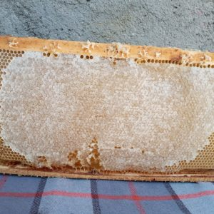 عسل ۴۰گیاه