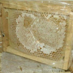 فروش محصولات زنبورستان