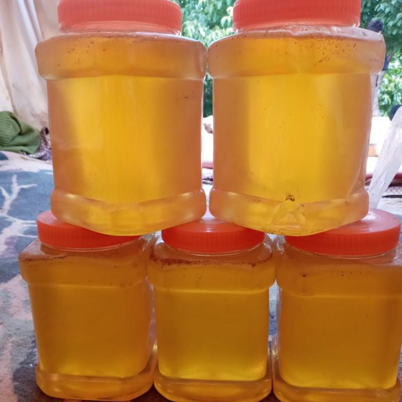 عسل گون باساکروز 1/8یعنی شیره وشهت گیاهان